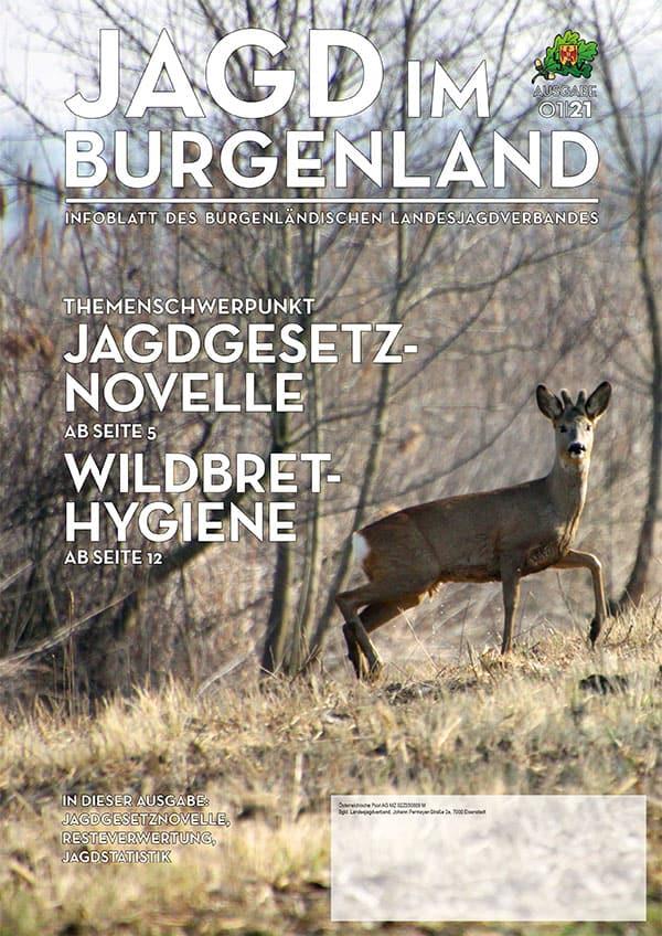 Jagd im Burgenland 1/2021